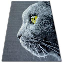 Bcf flash szőnyeg 33323/170 - Macska